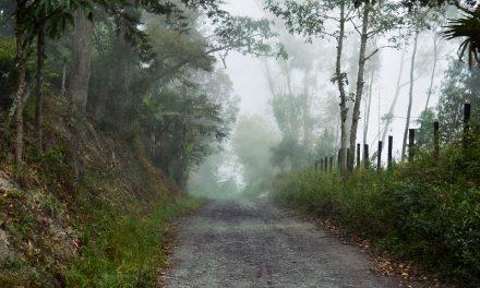 El terror que se calla: violencia sexual en el marco del conflicto armado en Colombia