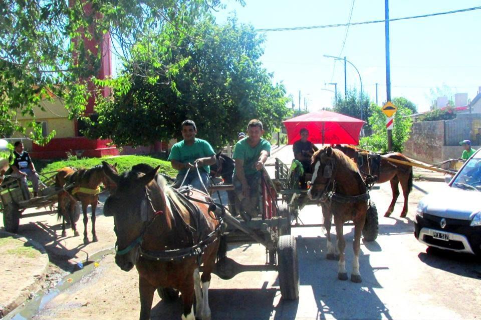 ¿Puede un caballo tener un trabajo digno? Esta organización de recicladores argentinos lo está intentando